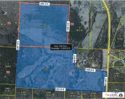 Residential Lots & Land For Sale: 39119 Hwy K