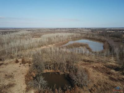 Knob Noster Residential Lots & Land For Sale: NE E Highway