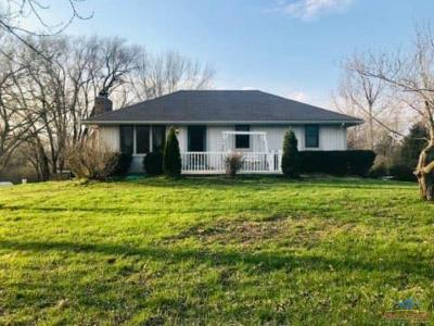 Windsor Single Family Home For Sale: 20467 Ft. Lyon Rd