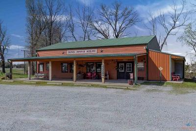 Warsaw Commercial For Sale: 30148 W Dam Access Rd