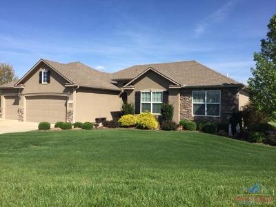 Henry County Single Family Home For Sale: 246 NE 104 Rd