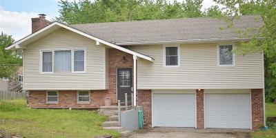 Johnson County Single Family Home For Sale: 301 Knoll Dr