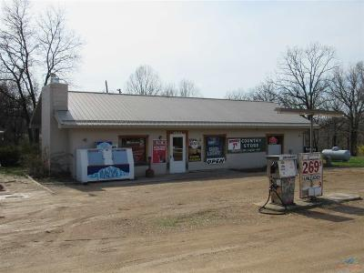 Warsaw Commercial For Sale: 24068 Hwy Bb