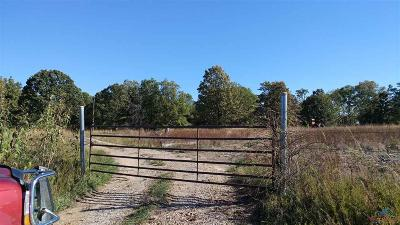 Residential Lots & Land For Sale: S 13 Hwy