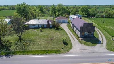 Henry County Single Family Home For Sale: 1181 N 13 Highway