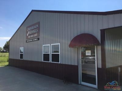Clinton Commercial For Sale: 445 SW 351 Rd