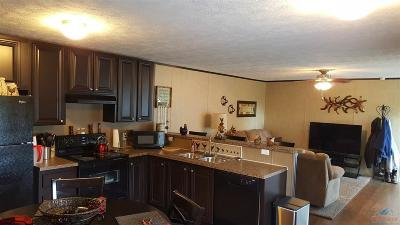 Manufactured Home For Sale: 29415 Red Wagon Ave