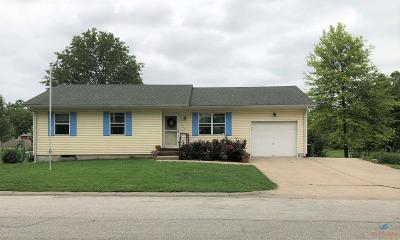 Henry County Single Family Home For Sale: 715 E Grandriver