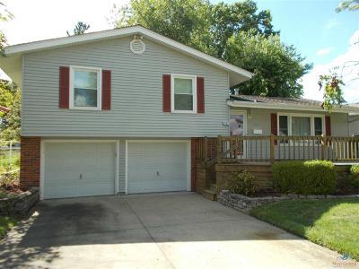 Sedalia Single Family Home For Sale: 904 Royal Blvd