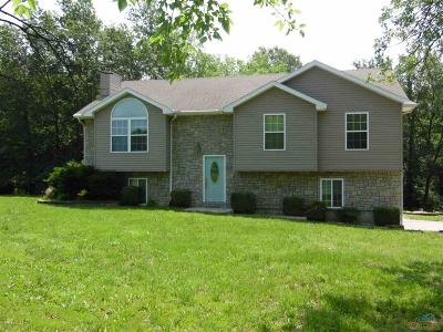 Johnson County Single Family Home For Sale: 685 NW 11th