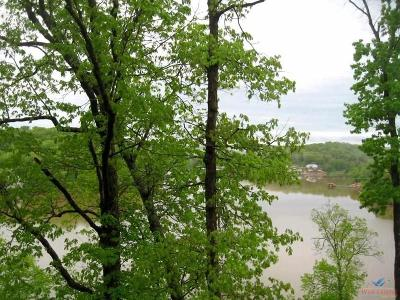Morgan County Residential Lots & Land For Sale: Lot 29/30 Eagle Bay Dr