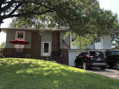 Henry County Single Family Home For Sale: 2200 Antioch