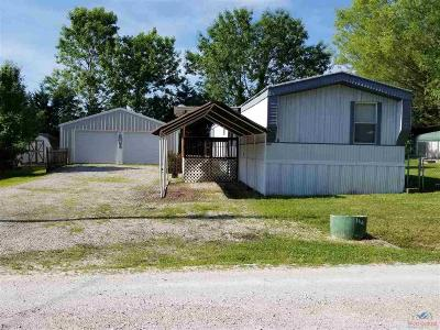Benton County, Henry County, Hickory County, Saint Clair County Single Family Home For Sale: 16494 Springfield Rd