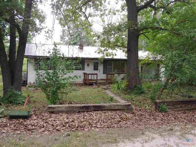 Single Family Home For Sale: 20191 County Rd 190