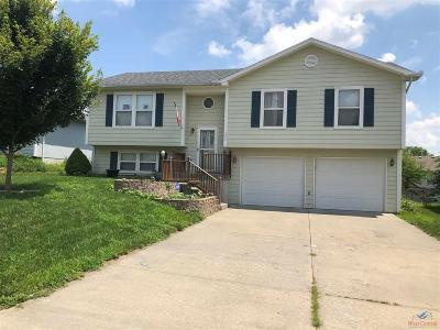 Johnson County Single Family Home For Sale: 205 Summer Pl