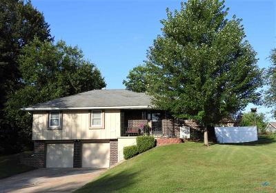 Johnson County Single Family Home For Sale: 241 SE 101st Rd.