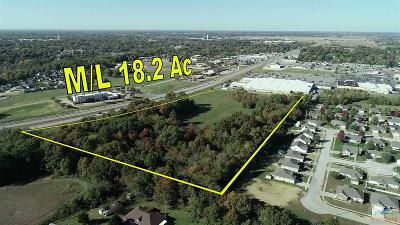 Clinton Commercial For Sale: S Hwy 52 & 13