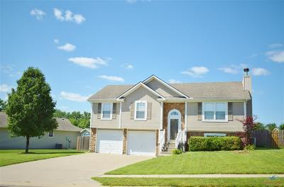Johnson County Single Family Home For Sale: 1206 Wildflower Rd