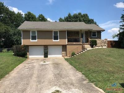 Henry County Single Family Home Sale Pending/Backups: 2217 N Gaines Drive