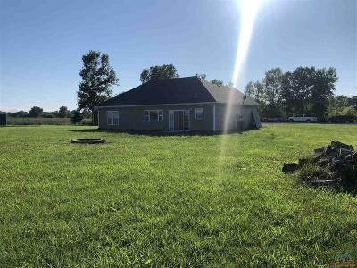 Knob Noster Single Family Home For Sale: 397 SE 971st Rd
