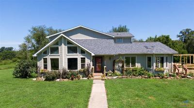 Henry County Single Family Home For Sale: 570 NE 601 Road