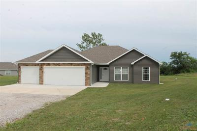 Knob Noster Single Family Home For Sale: 395 SE 981