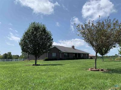 Knob Noster Single Family Home For Sale: 10208 Knob Noster Rd