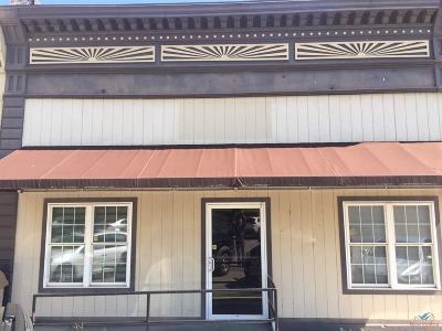 Osceola Commercial For Sale: 286 Chestnut Street