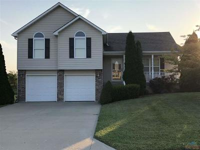 Warrensburg Single Family Home For Sale: 1306 Stoneybrooke Dr