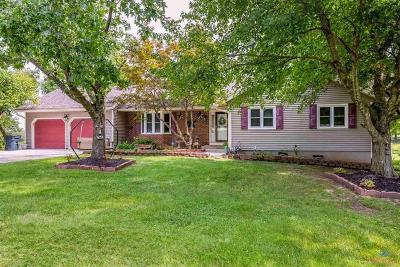 Warrensburg Single Family Home For Sale: 233 NE 71st Rd.