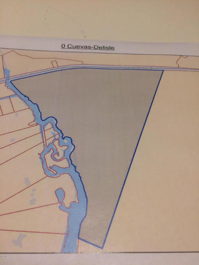 Pass Christian Residential Lots & Land For Sale: Cuevas Delisle Rd