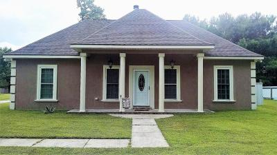Bay St. Louis Single Family Home For Sale: 6040 Carlton Roberts Rd