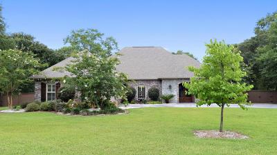 Biloxi Single Family Home For Sale: 12465 Raintree Pl