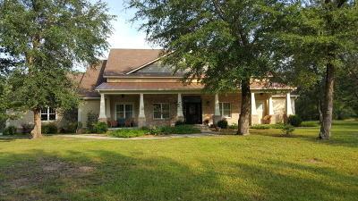 Gulfport Single Family Home For Sale: 14304 Wolf Run Blvd