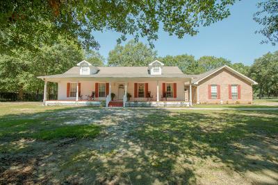 Gulfport Single Family Home For Sale: 11281 Magnolia Terrace Pl