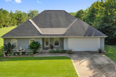 Gulfport Single Family Home For Sale: 11273 Creek Dr