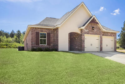 Gulfport Single Family Home For Sale: 14958 Audubon Lake Blvd.