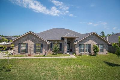 Gulfport Single Family Home For Sale: 17251 Excalibur Cir