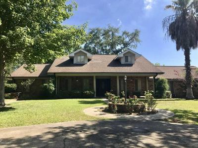 Bay St. Louis Single Family Home For Sale: 507 Esplanade Ave