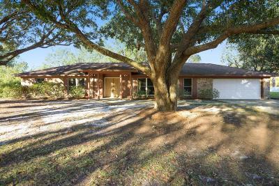 Ocean Springs Single Family Home For Sale: 117 St Andrews Dr