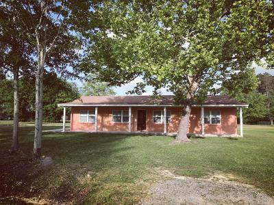 Ocean Springs Single Family Home For Sale: 9200 Martin Ave