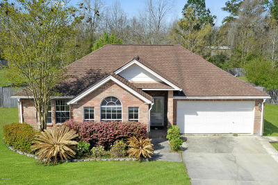 Gulfport Single Family Home For Sale: 13431 Tara Hills Dr