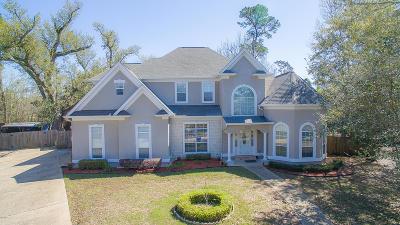 Gulfport Single Family Home For Sale: 9028 Greymonte Cir