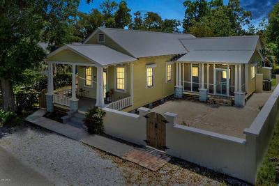 Bay St. Louis Single Family Home For Sale: 134 Keller St
