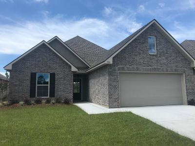 Ocean Springs Single Family Home For Sale: 465 Palm Breeze Dr