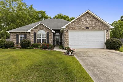 Ocean Springs Single Family Home For Sale: 6324 Luckey Ln