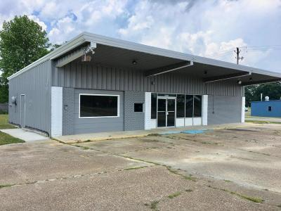 Commercial For Sale: 17268 Highway 53