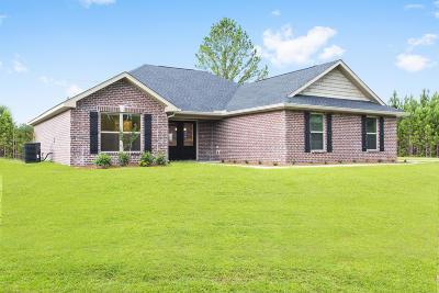 Gulfport Single Family Home For Sale: 16429 Orange Grove Rd