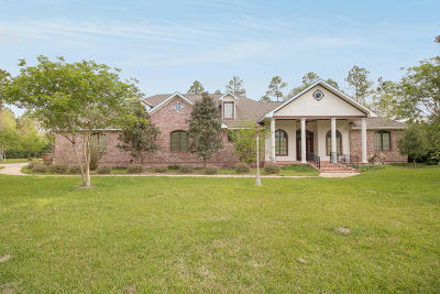Biloxi Single Family Home For Sale: 13445 Old Highway 67