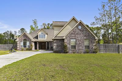 Single Family Home For Sale: 6204 Palmetto Pointe Dr